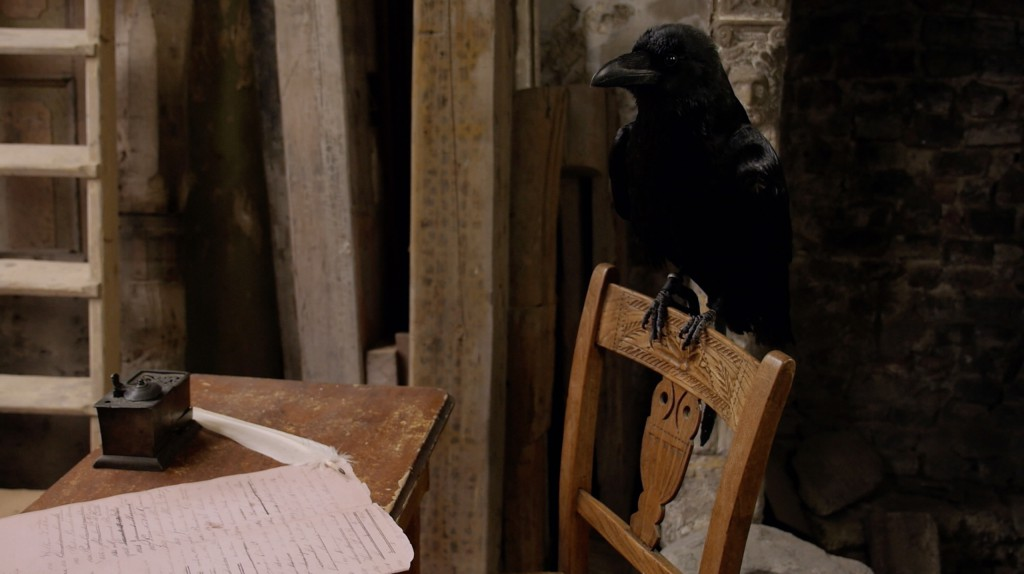 Raven Koie 1 jpg
